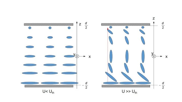 TN-Zelle (schematisch) (c)