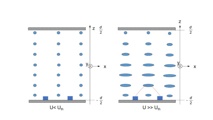IPS-Zelle (schematisch) (c)