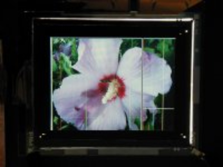 LCD with Poly-Crystalline TFTs Built at the IGM